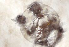 Muskelgruppen-Trainingskombinationen für Bodybuilding