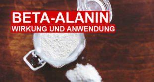 Beta Alanin – Wirkung, Einnahme und Dosierung