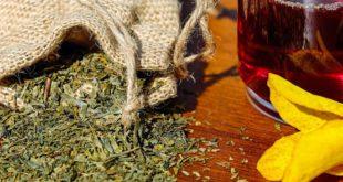 Mehr Wachheit und Energie durch alternative Koffeinquellen