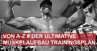 Der ultimative Muskelaufbau Trainingsplan