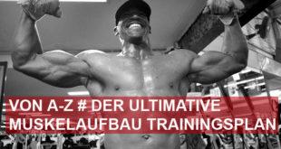 Muskelaufbau Trainingsplan - Die ultimative Anleitung