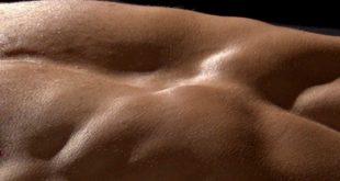 Muskeln - Jeder hat sie, aber verkennt oft das Potential.