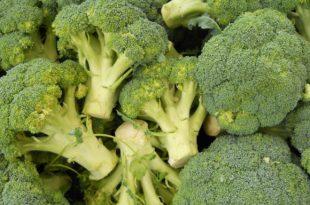 Nährstoffwunder Brokkoli