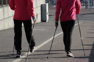Fettverbrenner Nordic Walking