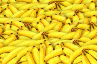Rezept: Frischkäse-Bananen-Shake
