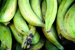Rezept: Bananen Shake zum sattmachen