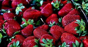 Rezept: Erdbeer Shake