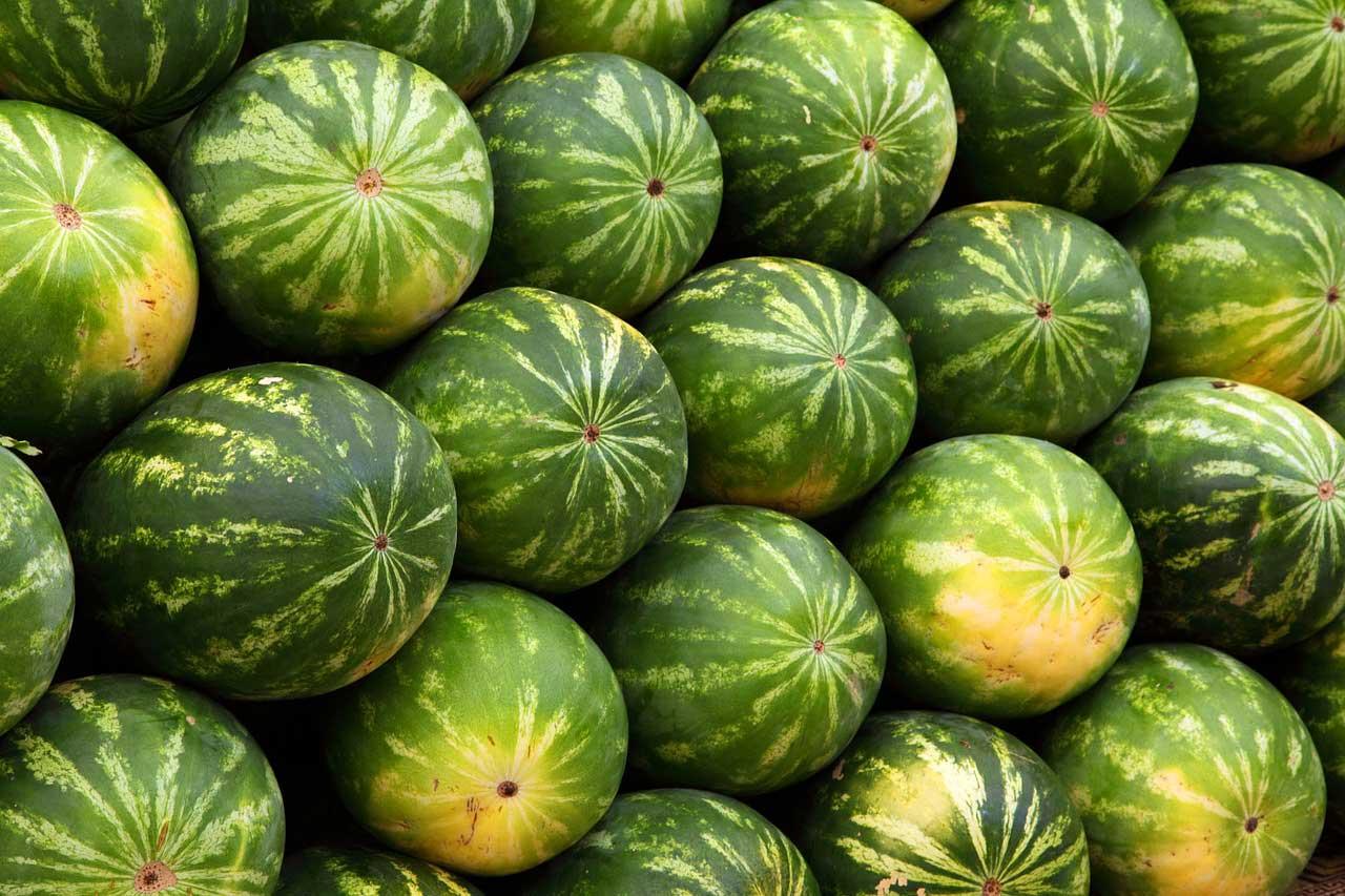Melonen-Shake Rezept