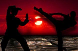 Sinnlich kämpfen mit Sen Fi: Aerobic Übungen mit fernöstlichen Kampfelementen