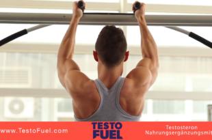 TestoFuel Erfahrungen – Der beste Natürliche Testosteronbooster?